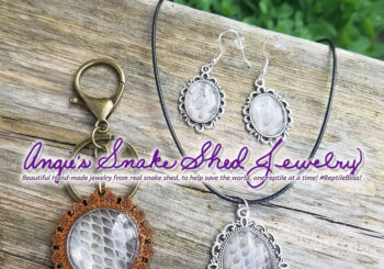 Authentic Snake Shed Jewelry