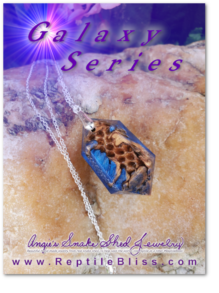 Angie's Snake Shed Jewelry, Galaxy Series